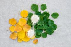 Piaska zegar na lata i jesieni liściach obrazy royalty free