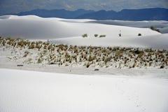piaski biały Zdjęcia Stock
