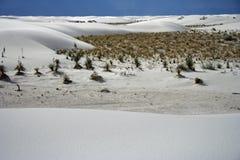 piaski biały Obraz Royalty Free