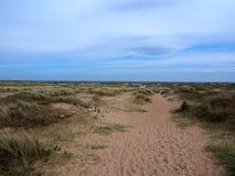 Piaski Wyrzucać na brzeg, Tentsmuir las, Tayport Obrazy Royalty Free