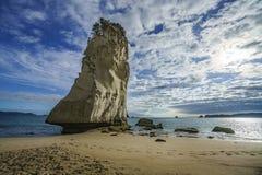 Piaskowa rockowy monolit, katedralna zatoczka, coromandel, nowy Zealand 23 obraz royalty free