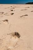 piaskowaci sposoby obrazy stock