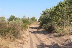 Piaskowata droga w Afrykańskim Bushveld Zdjęcie Royalty Free