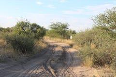 Piaskowata droga w Afrykańskim Bushveld Fotografia Stock