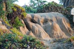 Piaskowata faleza w południowym Kalifornia Obrazy Stock