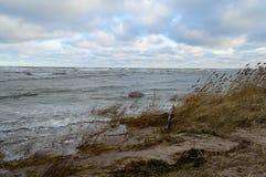 piaskowata morze plaża z szeroką kąt perspektywą Obraz Royalty Free