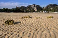 Piaskowata plaża gdy odpływu przypływ Zdjęcie Royalty Free