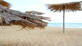Piaskowata plaża Z Pokrywającymi strzechą parasolami Na Wietrznym dniu zbiory wideo