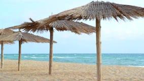 Piaskowata plaża Z Pokrywającymi strzechą parasolami Na Wietrznym dniu zdjęcie wideo