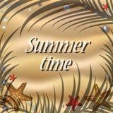 Piaskowata plaża z skorupami, rozgwiazdą i cieniem drzewka palmowe, Zdjęcia Stock