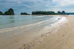 piaskowata plaża, drzewa i denna kipiel, Fotografia Royalty Free