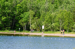 Piaskowata plaża w Oastler jeziora parku, Ontario Zdjęcia Stock