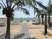 Piaskowata plaża z drzewkami palmowymi Zdjęcia Stock