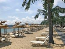Piaskowata plaża z drzewkami palmowymi 2 Obrazy Stock