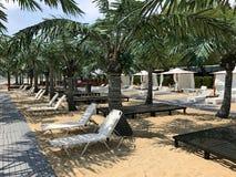Piaskowata plaża z drzewkami palmowymi 3 Obrazy Royalty Free