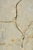 piaskowata suszy ziemia Zdjęcia Stock