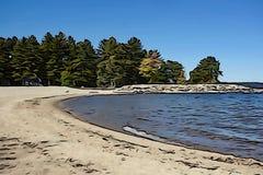 Piaskowata zatoczka, błękitny jezioro, sosny zdjęcia royalty free