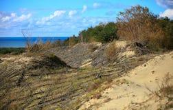 Piaskowate diuny Bałtycki wybrzeże Zdjęcia Royalty Free