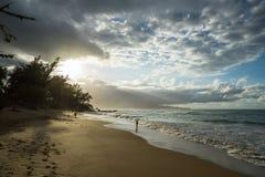 Piaskowate plaże Maui Hawaje obrazy royalty free