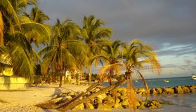 Piaskowatej plaży Barbados późne popołudnie Zdjęcia Royalty Free
