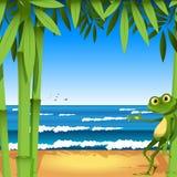 piaskowaty żaby seacoast royalty ilustracja