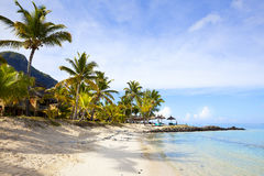 piaskowaty plażowy ocean Miesiąc miodowy na tropikalnej wyspie Mauritius Fotografia Royalty Free