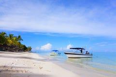 piaskowaty plażowy ocean Miesiąca miodowego o tropikalna wyspa Mauritius Zdjęcie Royalty Free