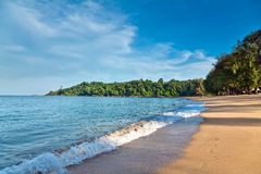 piaskowaty plażowy wczesny poranek Obrazy Royalty Free
