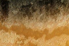 piaskowcowa tekstura Zdjęcia Stock