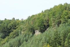 Piaskowcowe falezy w lesie Obraz Royalty Free