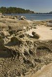 Piaskowcowe rockowe formacje, Drumbeg prowincjonału park, Gabriola wyspa, BC, Kanada obrazy stock