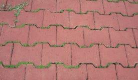 Piastrella per pavimento Immagini Stock Libere da Diritti
