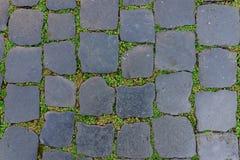 Piastrella per pavimento antica della pietra del granito con erba verde come fondo Immagini Stock Libere da Diritti
