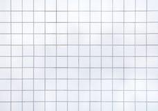 Piastrelle per pavimento Fotografie Stock Libere da Diritti