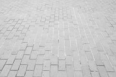 Piastrelle per pavimento armoniche bianche fotografia stock