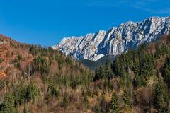 Piatra Craiului山在秋天 免版税库存照片
