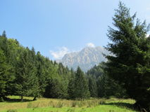 Piatra Craiului berg Arkivfoto