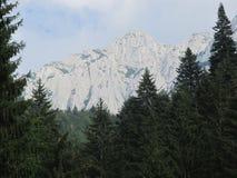 Piatra Craiului berg arkivbild