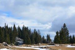 Piatra Craiului krajobraz Obrazy Royalty Free