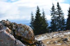 Piatra Craiului krajobraz Obrazy Stock