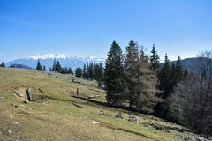Piatra Craiului mountains. Hiking on the road from Zarnesti to the Piatra Craiului mountains, in Romania stock photos