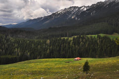 Piatra Craiului Mountains Royalty Free Stock Photos