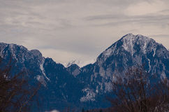 Piatra Craiului mountains. Romania, mountains on a cloudy day Royalty Free Stock Photos