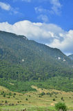 Piatra Craiului Mountains Royalty Free Stock Images