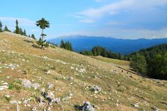 Piatra Craiului. National Park in Romania - hiking trail to Piatra Mica in Southern Carpathians stock images