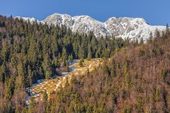 Piatra Craiului Nationalpark, Rumänien Lizenzfreie Stockbilder