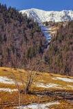 Piatra Craiului naturlig reserv, Rumänien Arkivbild