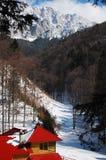 Piatra Craiului, no inverno Imagem de Stock Royalty Free