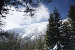 Piatra Craiului's ridge Stock Photo