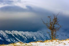 Piatra Craiului winter mountain ridge landscape Stock Photos